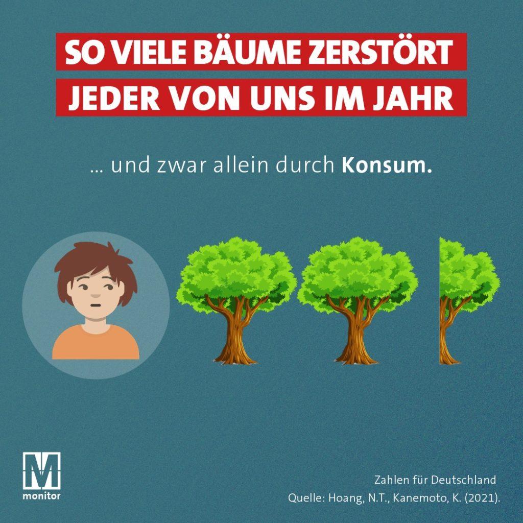 Recherche: abgeholzte Bäume pro Einwohner